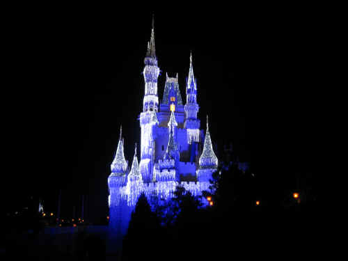 Cinderella Castle with lights!